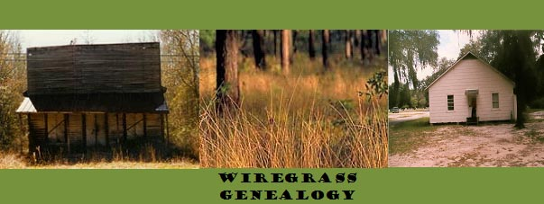 Wiregrass Genealogy